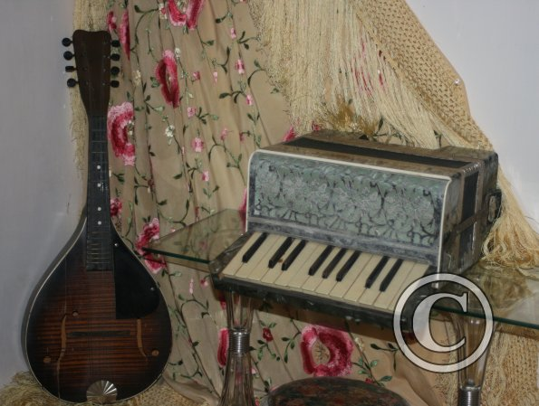 Mandolin and Accordian